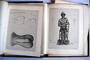 Egypte et Palestine : Observations médicales et: Ernest Godard