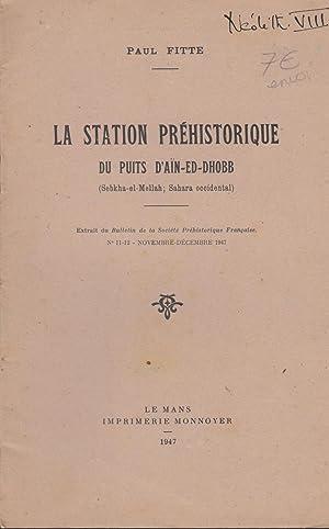 La Station préhistorique du Puits d'Aïn-ed-Dhobb (Sebkha-el-Mellah: Paul Fitte