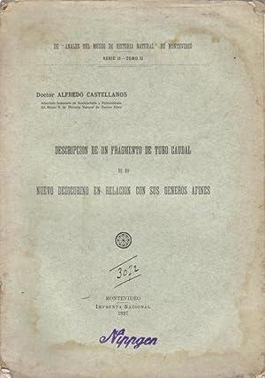 Descripcion de un fragmento de tubo caudal: Alfredo Castellanos