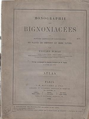 Monographie des bignoniacées ou Histoire générale et: Bureau, Édouard (1830-1918)