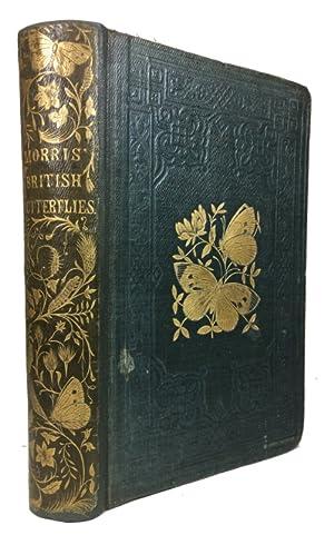 A History of British Butterflies: Morris, Rev. F.