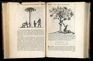 Caribbean] [Slavery] Histoire Naturelle et Morale des Iles Antilles de l'Amerique. Enrichie d&...