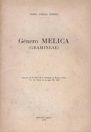 Género Melica (Gramineae): Torres, María Amelia
