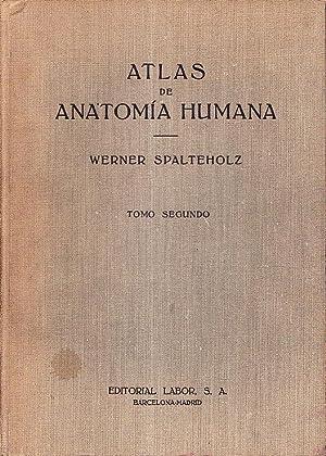 ATLAS DE ANATOMIA HUMANA - TOMO SEGUNDO: Werner Spalteholz