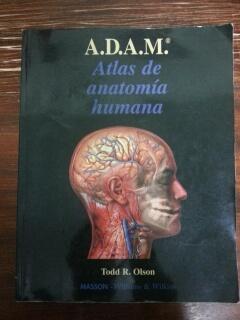 A.D.A.M ATLAS DE ANATOMIA HUMANA de Todd R. Olson: MASSON - WILLIAMS ...