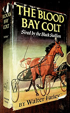 """THE BLOOD BAY COLT (subtitled """"Sired by: Farley, Walter"""
