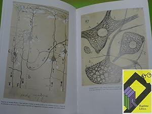 Cajal. La España Universal: FERNANDEZ SANTAREN, Juan Antonio/ SANCHEZ RON, Jose Manuel