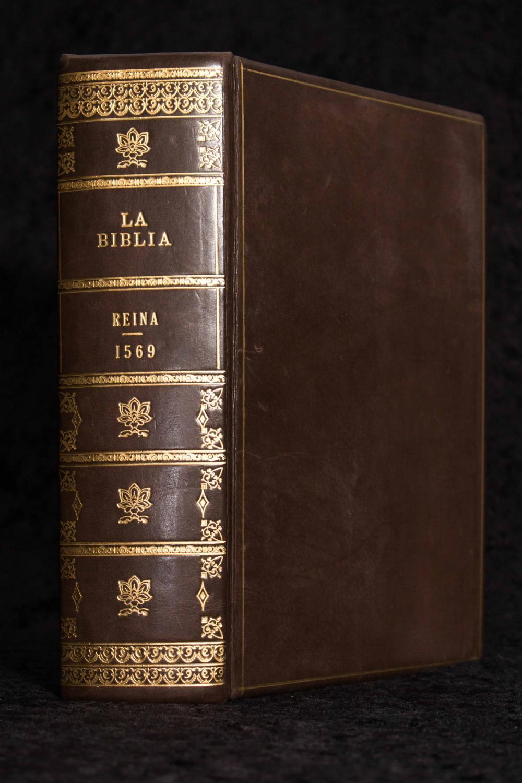 free The Golden Age (Czech Literature