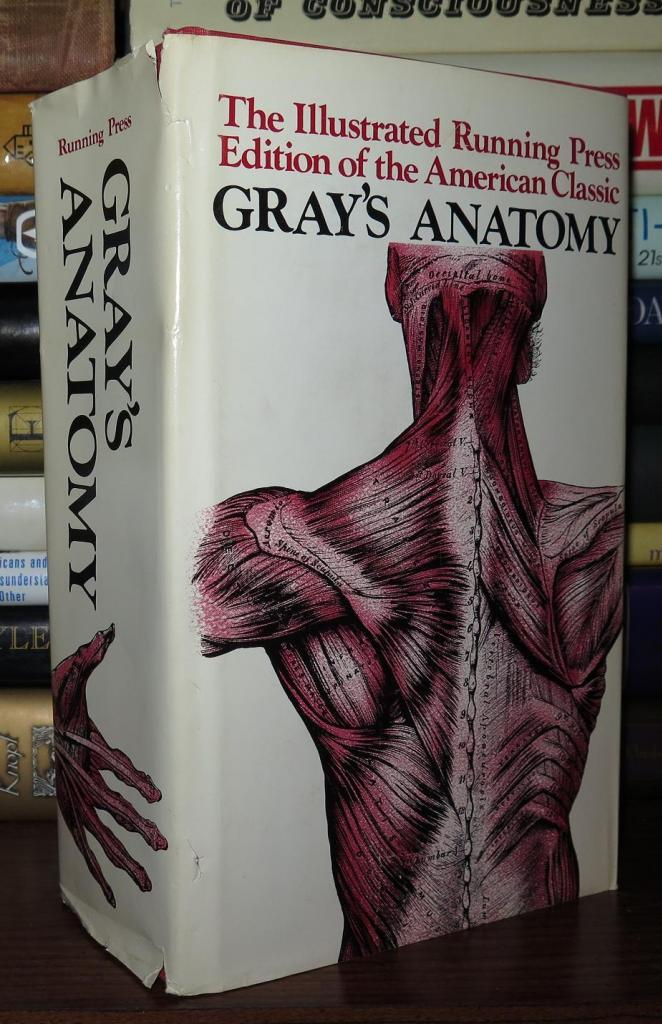 Grays Anatomy The Unabridged Running Press Edition Of The American