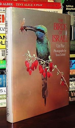THE BIRDS OF ISRAEL: Paz, Uzi