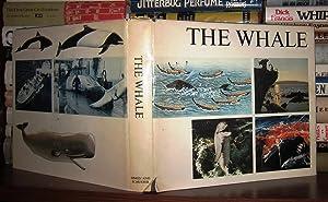 THE WHALE: Matthews, Dr Leonard Harrison (Ed) H.