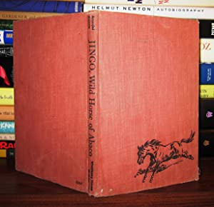 JINGO Wild Horse of Abaco: Arundel, Jocelyn; Illustrated