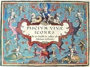 PISCIUM VIVAE ICONES. In aes incise et: COLLAERT, Adriaen