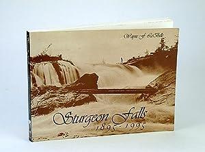 Sturgeon Falls, 1895-1995: LeBelle, Wayne F