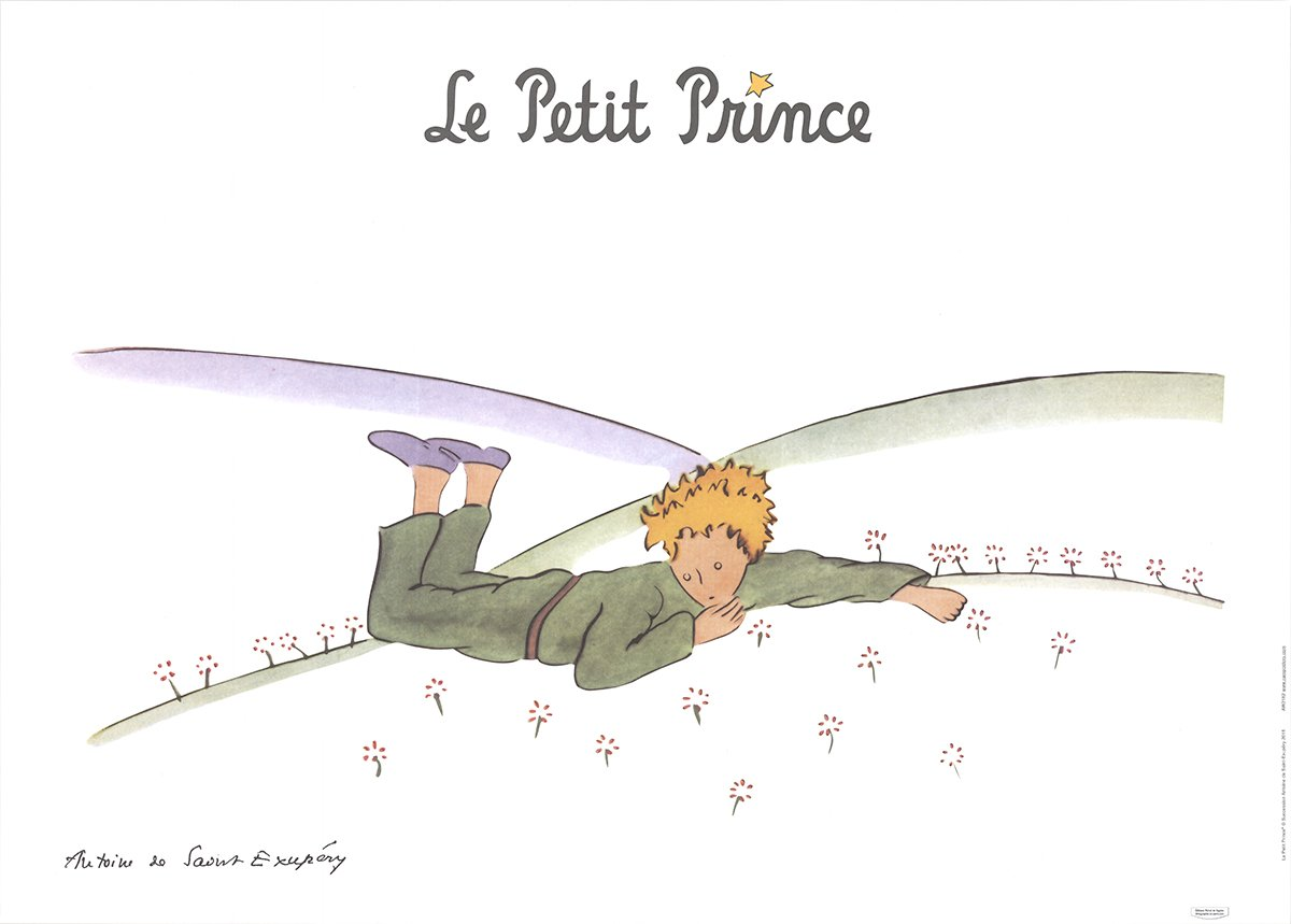 an outline of the story of the little prince by antoine de saint exupery The little prince, first published in 1943, is a novella and the most famous work of the french aristocrat, writer, poet and pioneering aviator antoine de sa.
