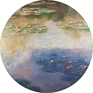 Claude Monet-Nympheas-2001 Poster