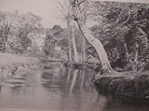 Trout and Salmon Fishing in Ireland - Signed Limited Edition: F.W.Pickard