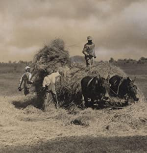 Farming in Mississippi, 1940s, 4 photos