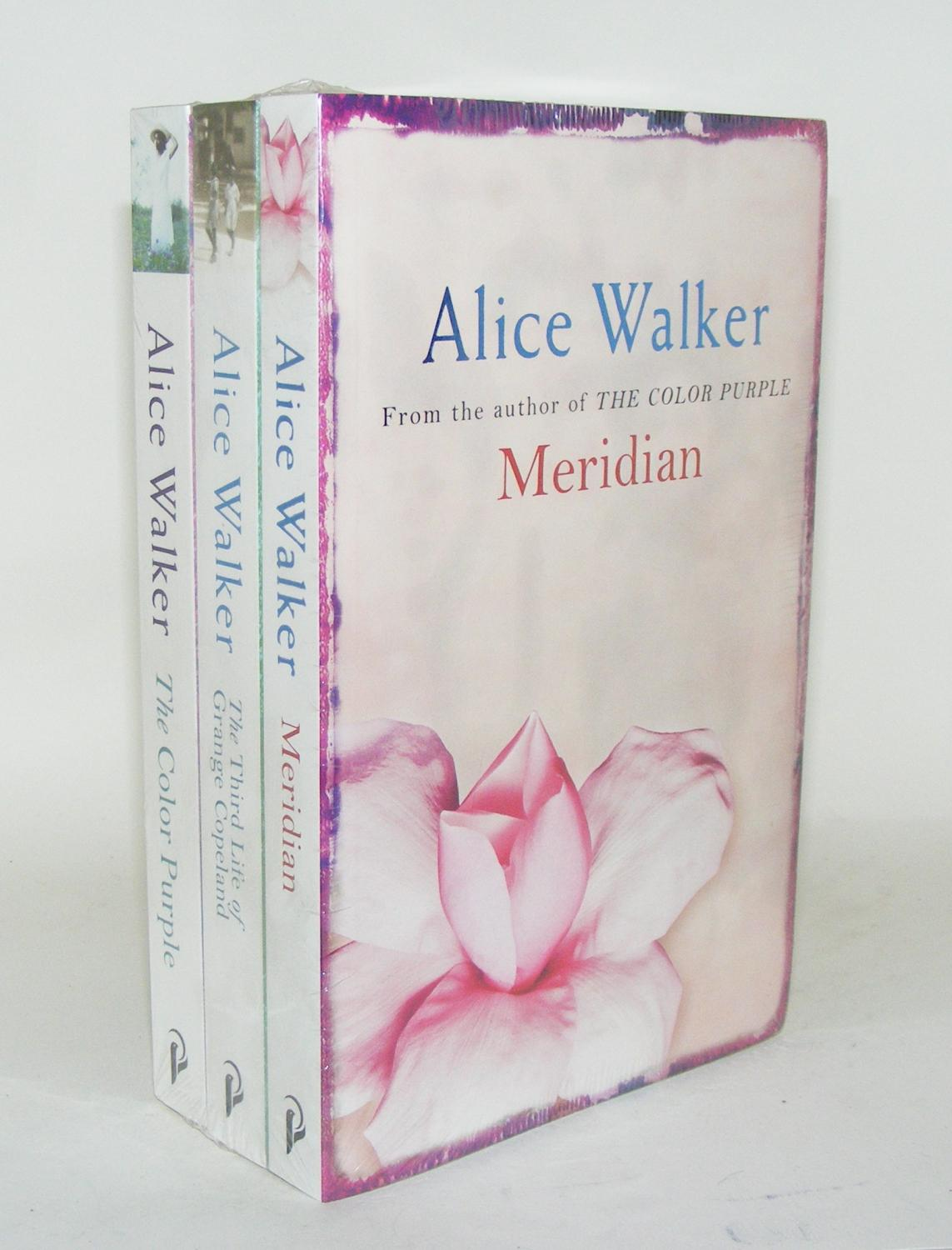 redemption in alice walkers color purple Alice walker's themes of womanism, community, and regeneration  through celie's experiences in the color purple, alice walker  reparation or redemption.