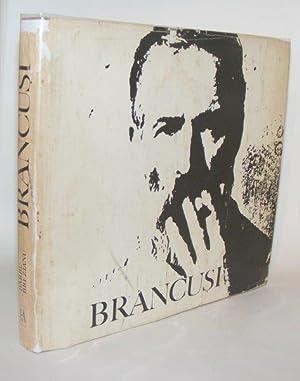 OPERA LUI CONSTANTIN BRANCUSI IN ROMANIA: BREZAINU Constantin