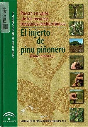 Puesta en valor de los recursos forestales: VVAA.
