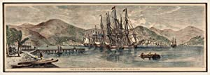 TOWN AND HARBOUR OF ST. THOMAS, WEST INDIES, LATELY PURCHASED BY THE UNITED STATES [caption title]