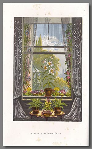 THE FLORAL WORLD AND GARDEN GUIDE [from 1877:] AND COUNTRY COMPANION