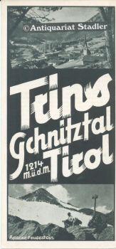 Trins Gschitztal Tirol 1214 M.ü.d.M. Reiseprospekt.: Verkehrsverein Trins: