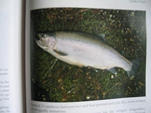Deceiving Trout: The Flytier's Art, An International Guide: Parsons, John