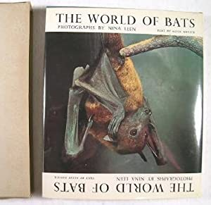 The World of Bats