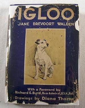 Igloo: Walden, Jane Brevoort.