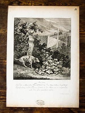 Kupferstich von J. E. Ridinger. Anno 1734.: Hund, Jagdhund, Ridinger,