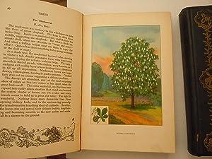 Nature Library (6 volumes): Seton, Ernest Thompson