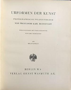 Urformen der Kunst. Photographische Pfanzenbilder: BLOSSFELDT, Karl