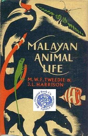 MALAYAN ANIMAL LIFE.: TWEEDIE, M.W.F. et