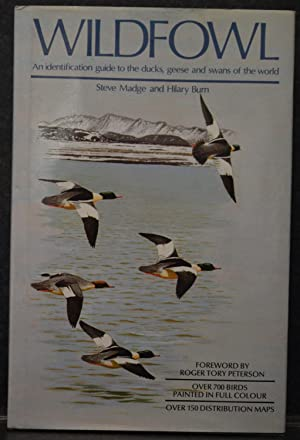 Wildfowl : An identification guide to the ducks, geese and swans of the world