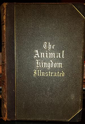 Animal Kingdom Illustrated (Johnson's Natural History, Comprehensive,: Goodrich, S. G.