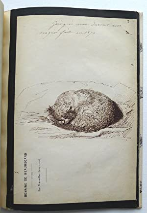 Gris-Gris. Croquis par Mme Viger 1870. An album of 22 sheets of original ink drawings of the cat ...