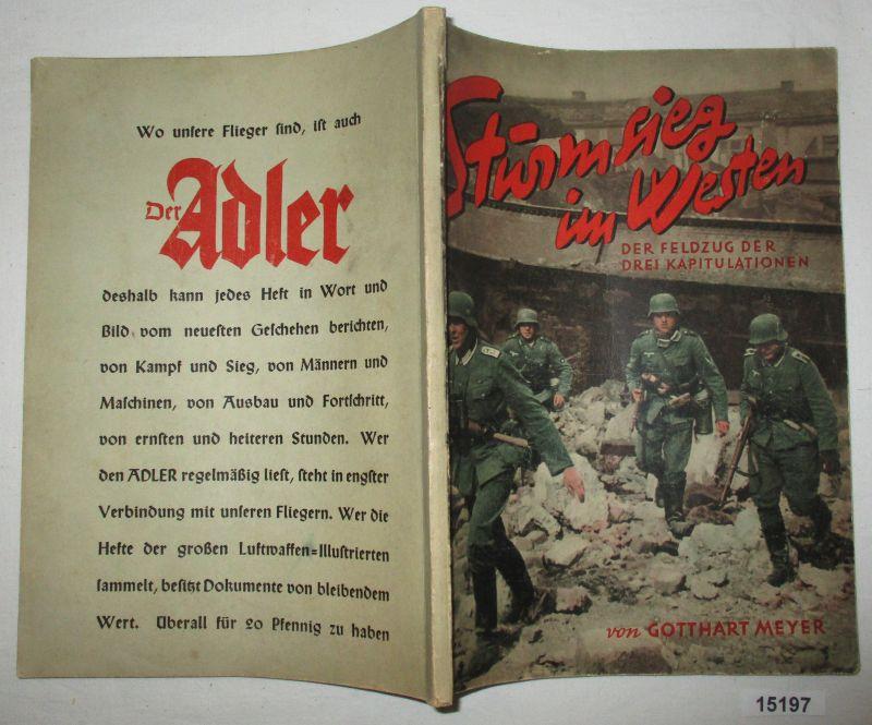 Sturmsieg im Westen: Der Feldzug der drei: Gotthart Meyer