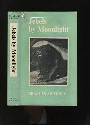 Jebels By Moonlight
