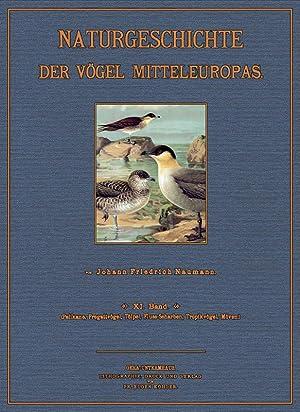Naturgeschichte der Vögel Mitteleuropas; Band 11 ( Orig ): Naumann, Johann Friedrich