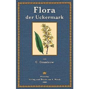 Flora der Uckermark: Grantzow, Carl