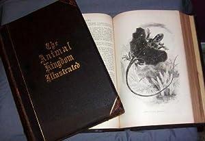 Johnson's Natural History, Comprehensive, Scientific, & Popular.: Goodrich, S. G.