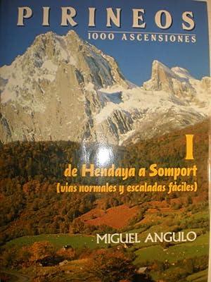 Pirineos 1000 ascensiones. Tomo I. De Hendaya a Somport ( Vías normales y escaladas f&aacute...