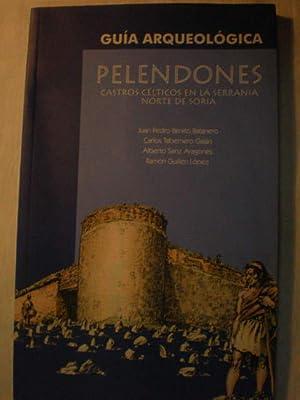 Pelendones. Castros Célticos en la Serranía Norte: Juan Pedro Benito