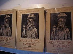 Peregrinaciones a Santiago ( 3 Vols.): Luis Vázquez de