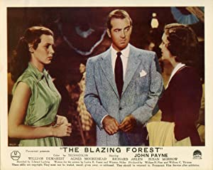 The Blazing Forest (Original photograph from the 1952 film): Ludwig, Edward (director); Lucien ...