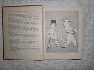 My Cat and Dog Book Illustrated (Louis Wain & Others): Various (But Unascribed)
