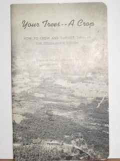 Your Trees - A Crop {How To Grow and Harvest Trees in the Douglas Fir Region}
