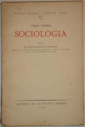 Sociologia. VIII. La autoconservacion de los grupos: Simmel, Jorge